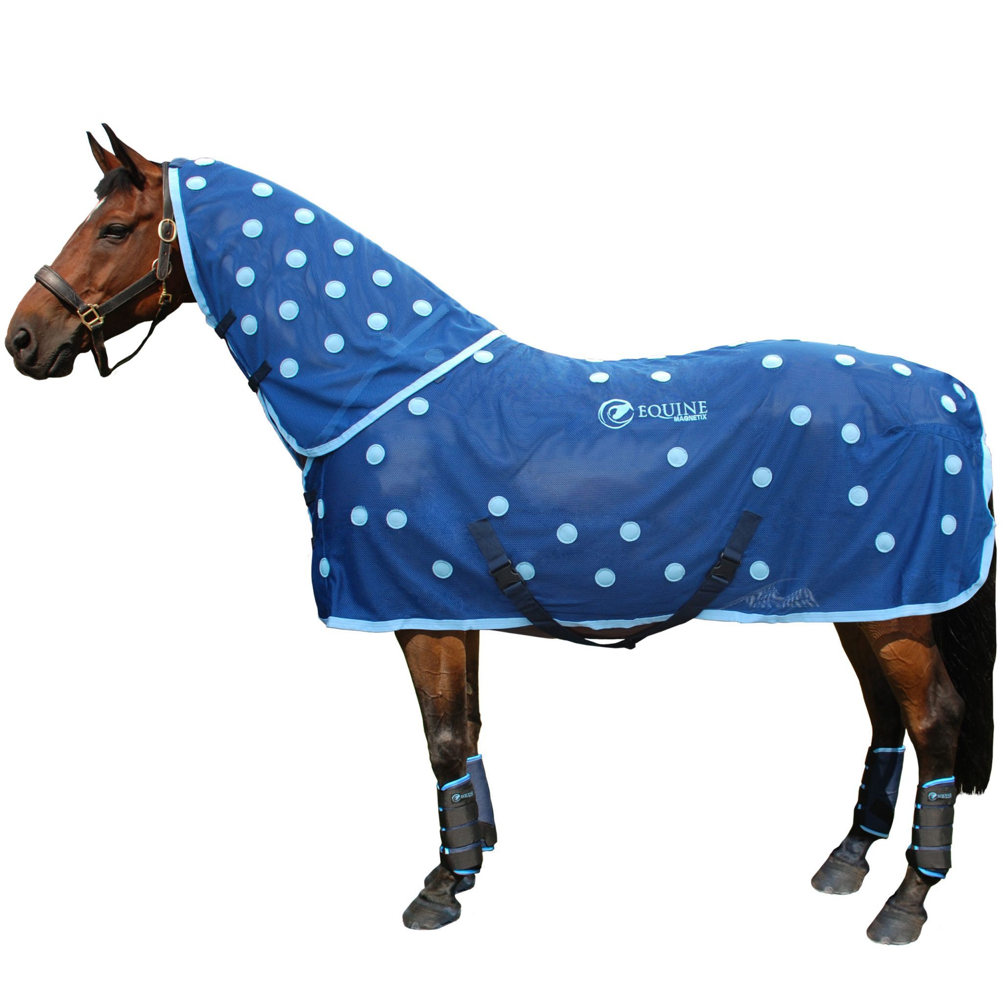 how to clean horse rugs
