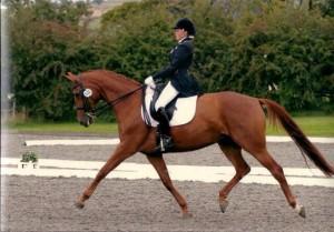 Antonia and Princess competing
