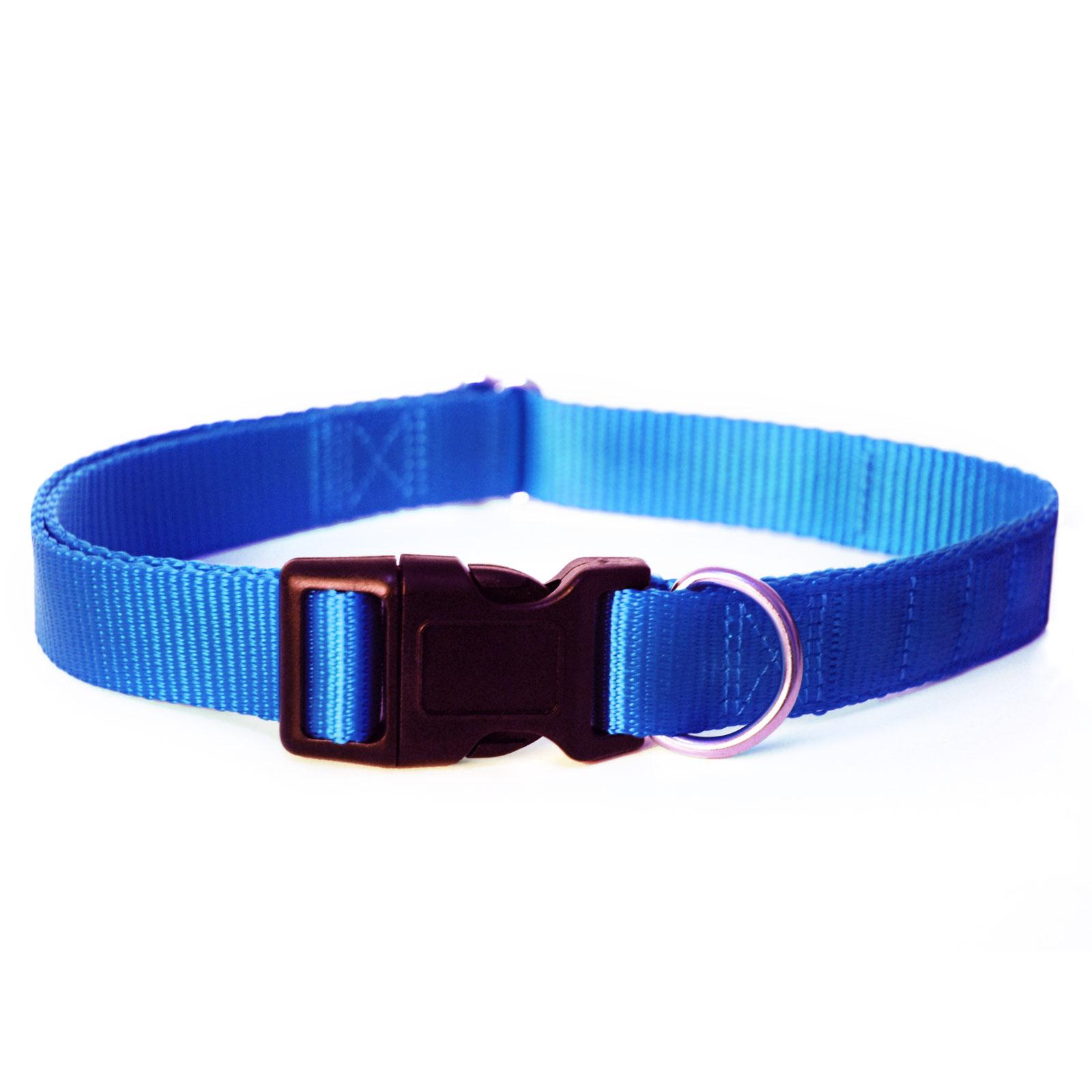 New Earth Dog Collar